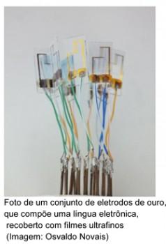 Foto: Divulgação / IFSC