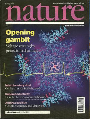 Foto: ReproduçãoA revista científica Nature descobriu o trabalho do Cemel em 2003 e publicou uma matéria de duas páginas sobre ele