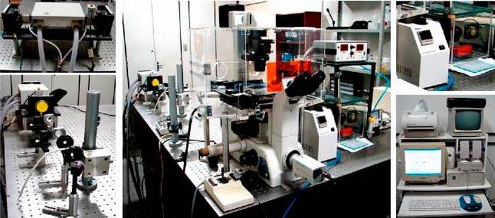 Foto: Divulgação / Laboratório de Pinças Óticas - UFRJ